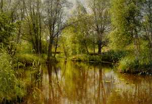 Peder Mork Monsted - Alandskab 一世 Solskin酒店 恩 Forar..