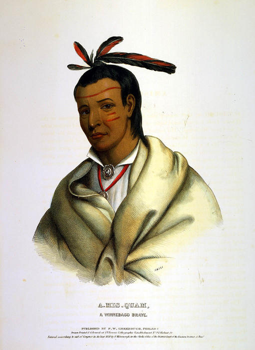 A-MIS-华富,A WINNEBAGO BRAVE 通过 Charles Bird King (1785-1862, United States) | ArtsDot.com