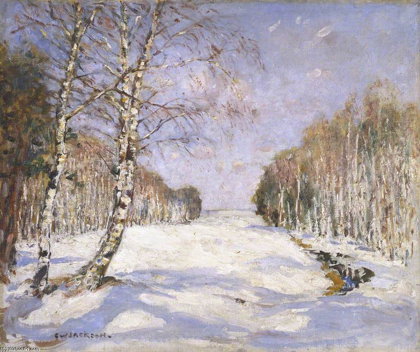 阴影 上  的 雪 通过 Frederick William Jackson (1859-1918, United Kingdom)